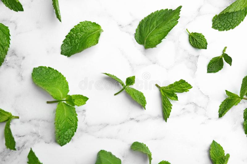 Fresh mint leaves on white marble , flat lay. Fresh mint leaves on white marble background, flat lay stock images