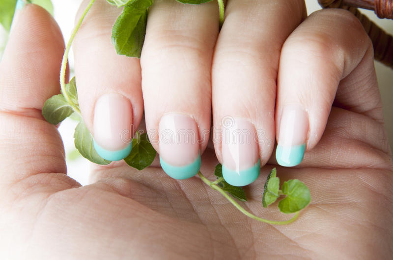 Fresh mint nails design. Female nails with beautiful manicure design and fresh mint leaves royalty free stock images