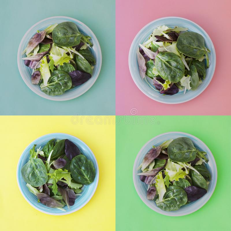 Collage of fresh mixed green salad in round plate, colorful background. Healthy food, diet concept. Top view, square image royalty free stock photo