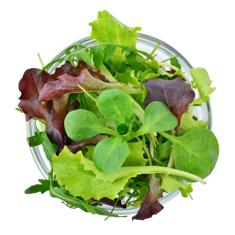 Fresh mixed greens leaf vegetables in bowl isolated, top view. Fresh mixed greens leaf vegetables in bowl isolated, overhead view stock photography