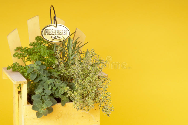 Download Fresh Mixed Herbs In A Wood Planter Stock Image - Image: 19726995