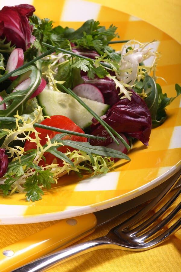 Fresh mixed salad royalty free stock photo