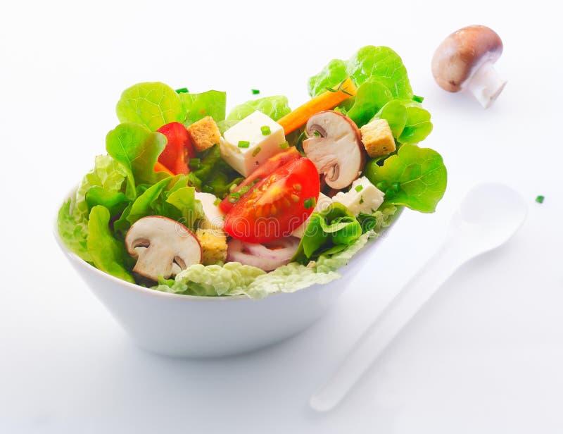 Fresh mixed salad with mushrooms stock photography