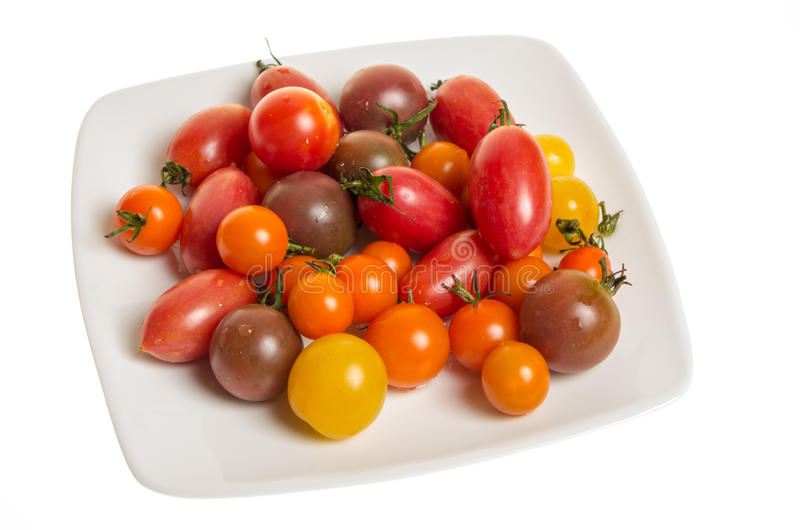 Fresh mixed tomatoes on plate royalty free stock images