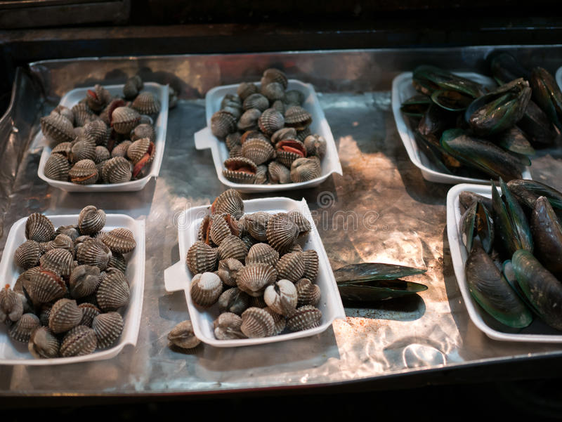 Fresh mollusks lying in substrate. Image of raw fresh mollusks lying in substrate royalty free stock photo