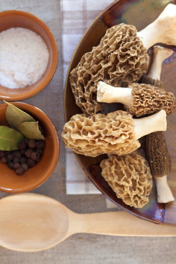 Fresh morel mushrooms. On a plate stock image