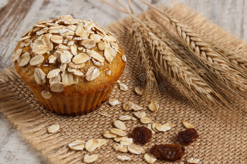 Fresh muffin with oatmeal baked with wholemeal flour and ears of rye grain, delicious healthy dessert stock photography
