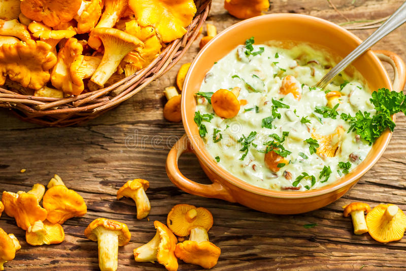 Fresh mushroom with cream and parsley are in the forest royalty free stock images