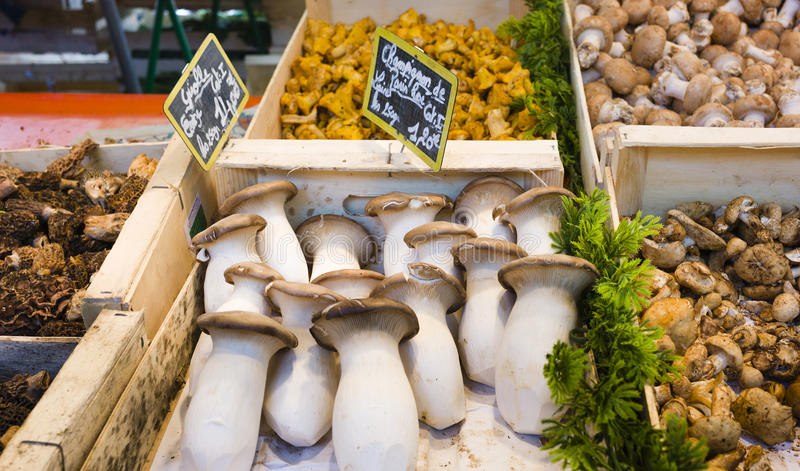 Fresh mushroom varieties in wooden boxes in French market in Paris, France royalty free stock image