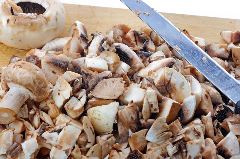 Fresh mushrooms. The closeup of fresh mushrooms on the cutting board stock image