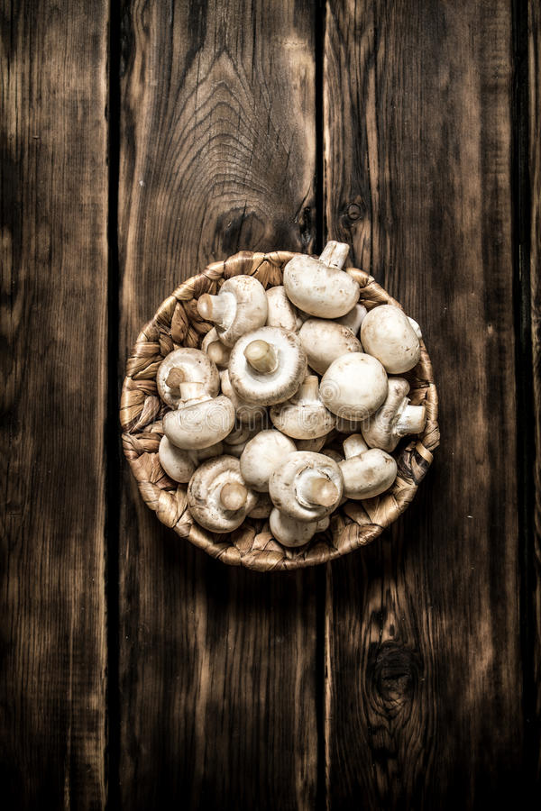 Fresh mushrooms in basket. On wooden background. Fresh mushrooms in basket. On a wooden background royalty free stock photography