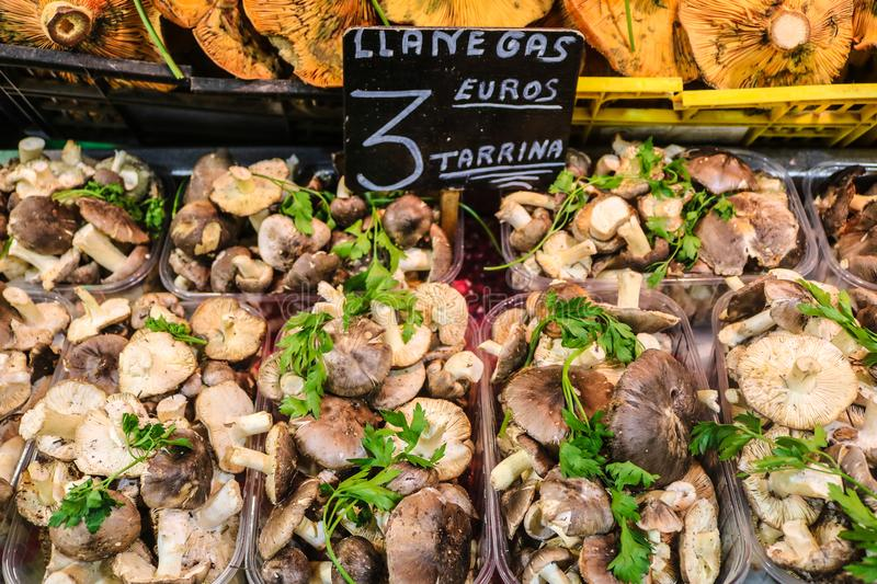 Vegetables for sale in a local market stock image