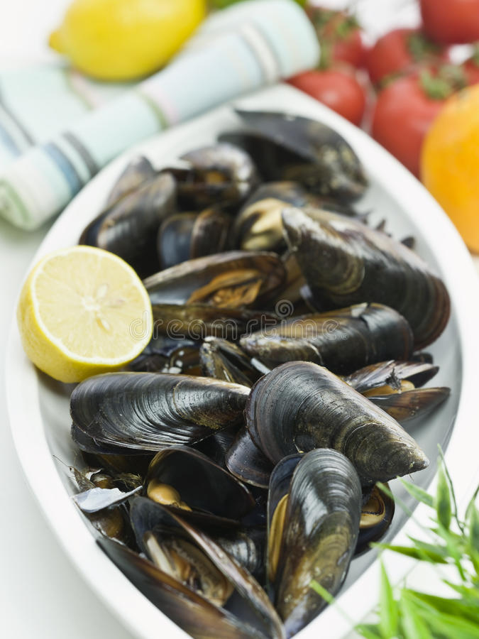 Fresh Mussel. With Lemon And Tomato On A White Plate stock photography