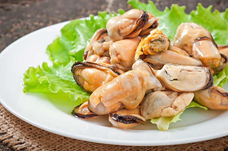 Fresh mussel with herbs. On table stock photo