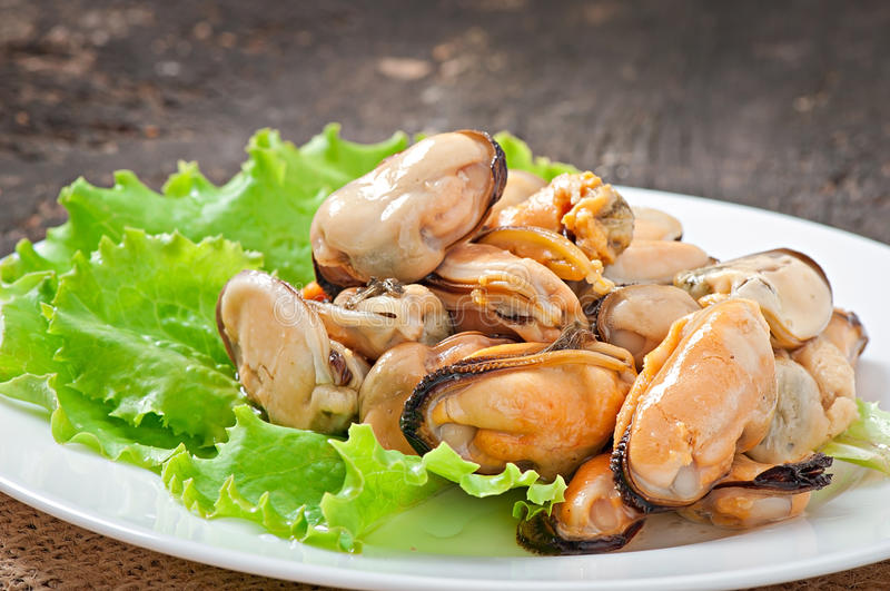 Fresh mussel with herbs. On table royalty free stock image