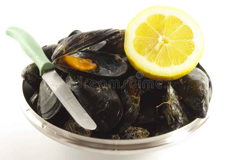 Fresh mussel with lemon royalty free stock photography