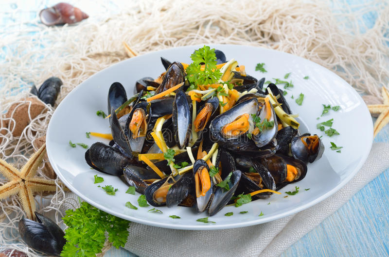 Fresh mussels royalty free stock photo