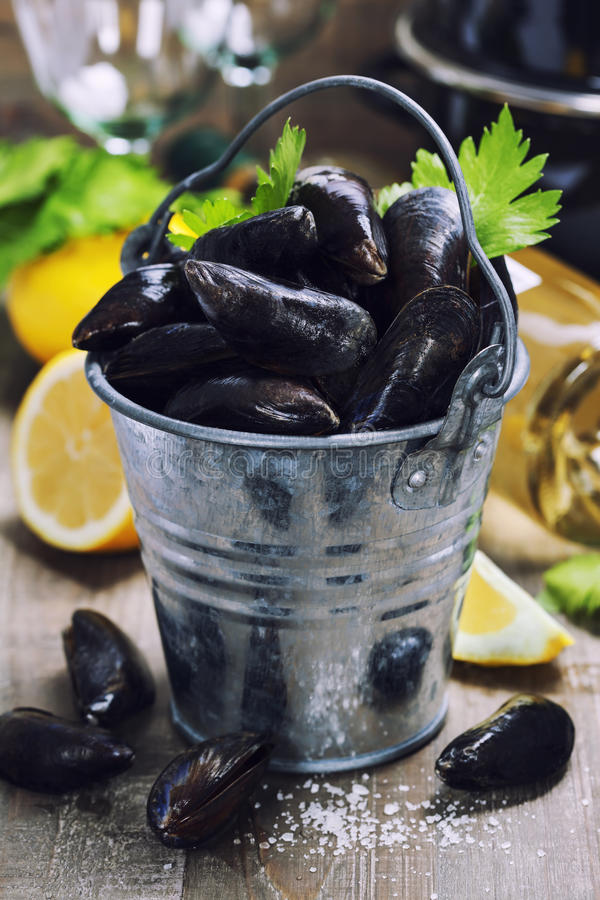 Fresh mussels ready for cooking stock photo