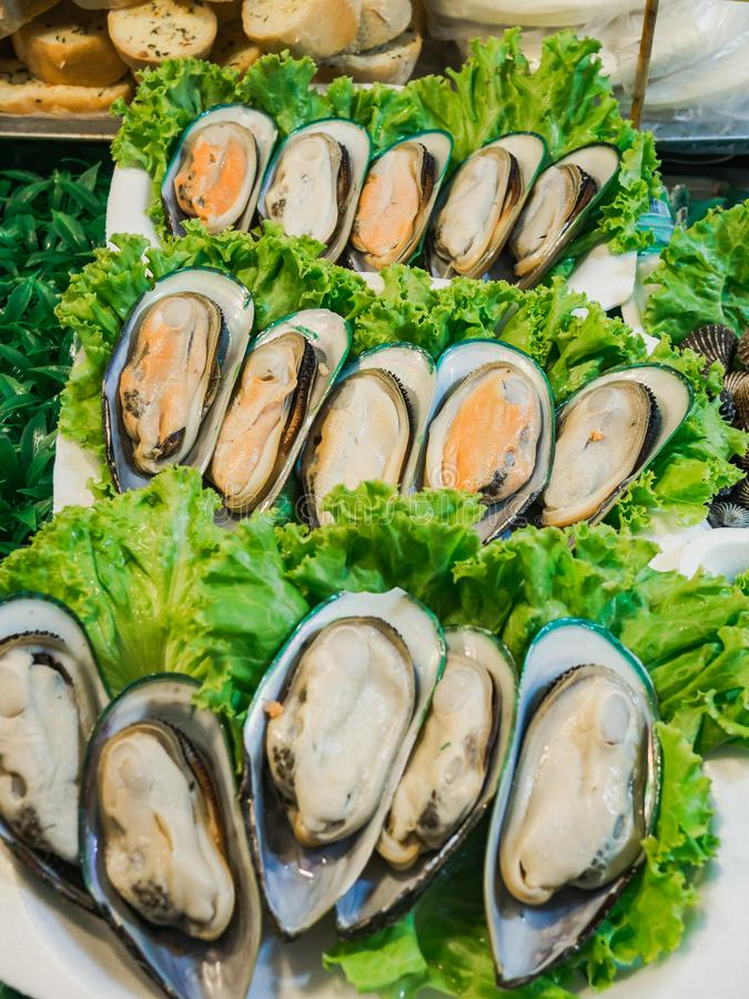 Fresh Mussels at thai market stock images