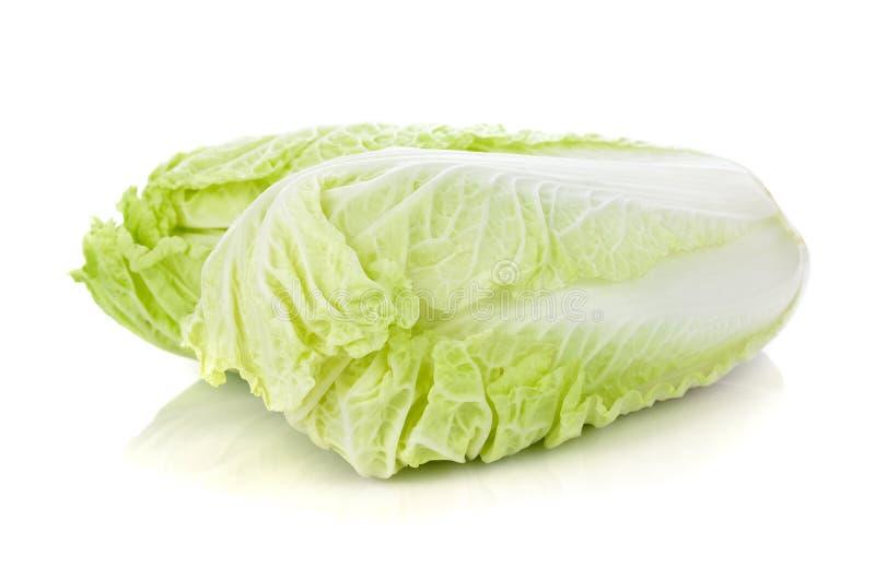 Fresh napa chinese cabbage royalty free stock photography