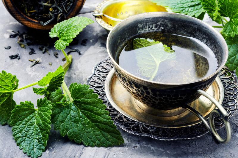 Cup of melissa tea. Fresh natural green melissa herbal tea in cup.Relaxation healthy beverage royalty free stock images