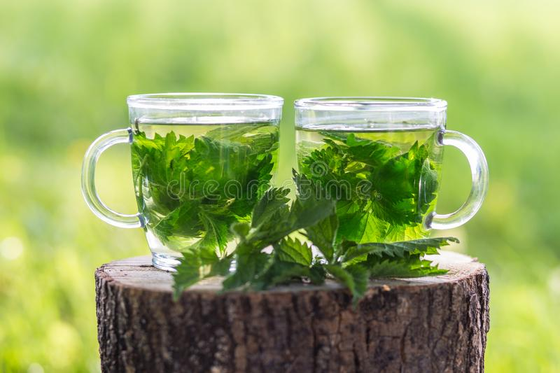 Fresh Nettle Tea In The Spring Evening. Nettle tea made of nettles in the spring evening served on the wooden tray royalty free stock photography