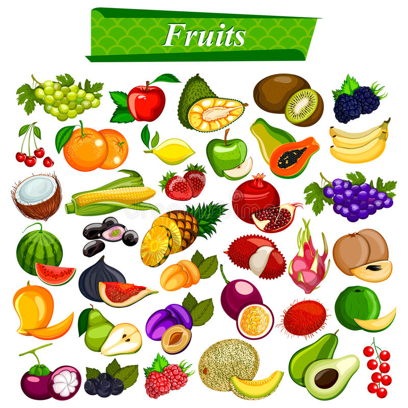Fresh and nutritious fruit set including apple, orange, grapes, coconut, berry. Illustration of fresh and nutritious fruit set including apple, orange, grapes stock illustration
