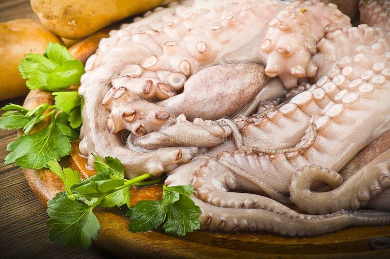 fresh octopus with potatoes stock photos