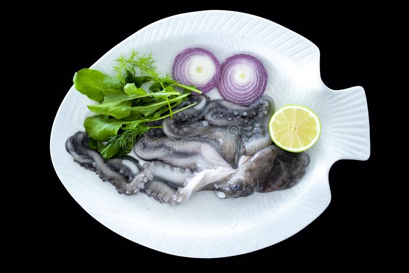 Fresh octopus with rockets leaves served on white plate stock images