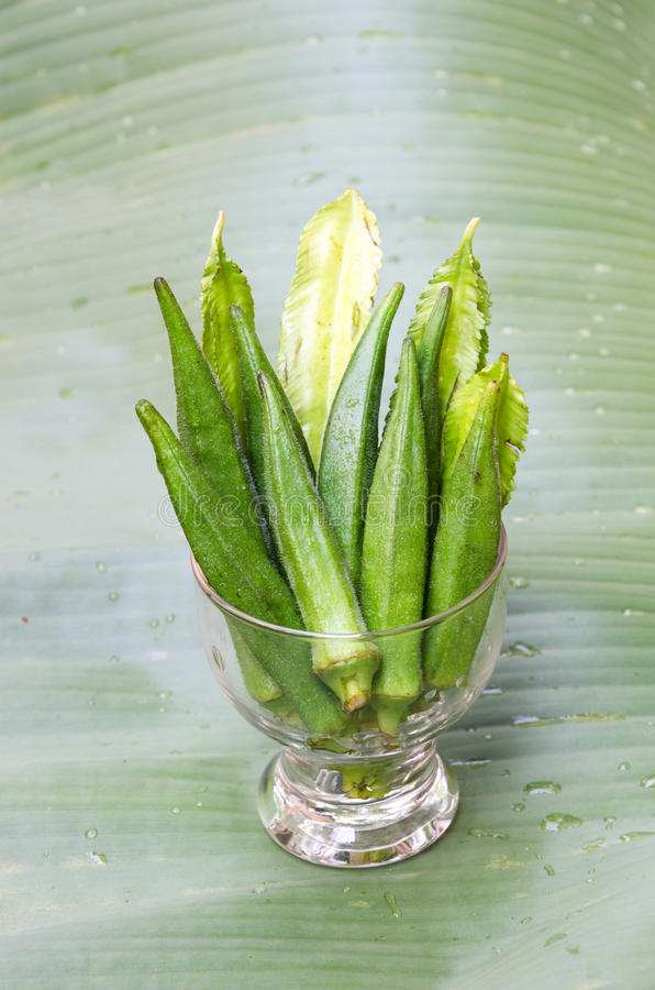 Fresh okra and winged bean royalty free stock image