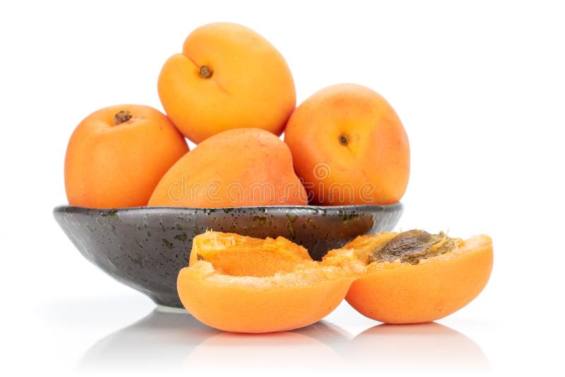 Fresh orange apricot isolated on white. Group of four whole two halves of fresh deep orange apricot on grey ceramic plate with a stone isolated on white stock photos