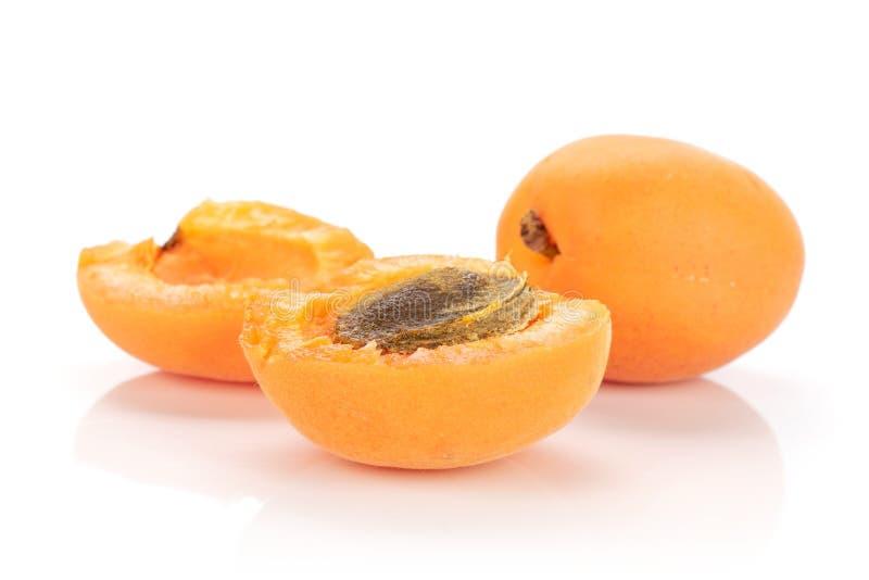 Fresh orange apricot isolated on white. Group of one whole two halves of velvety fresh deep orange apricot with a stone isolated on white background stock photos