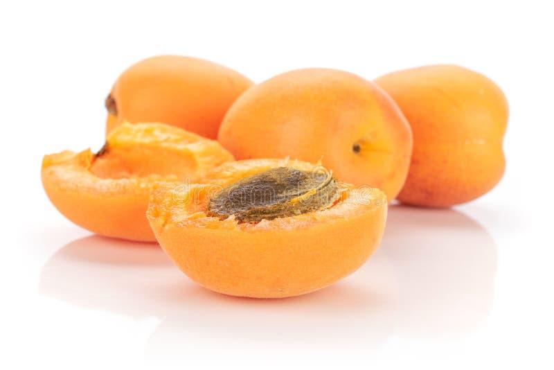 Fresh orange apricot isolated on white. Group of three whole two halves of fresh deep orange apricot with a stone isolated on white background stock photos
