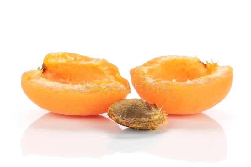 Fresh orange apricot isolated on white. Group of two halves of ripe fresh deep orange apricot with a stone isolated on white background stock photography