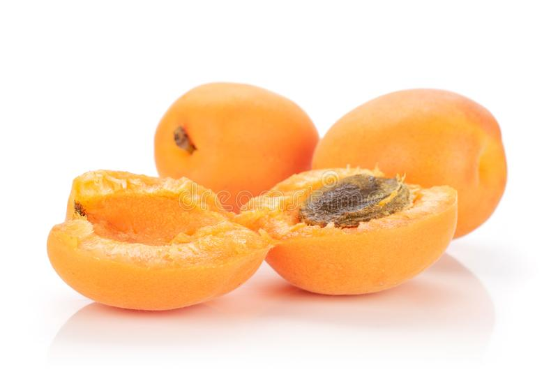 Fresh orange apricot isolated on white. Group of two whole two halves of meaty fresh deep orange apricot with a stone isolated on white background stock photography
