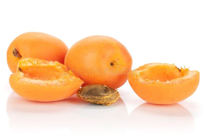 Fresh orange apricot isolated on white. Group of two whole two halves of ripe fresh deep orange apricot with a stone isolated on white background royalty free stock photography