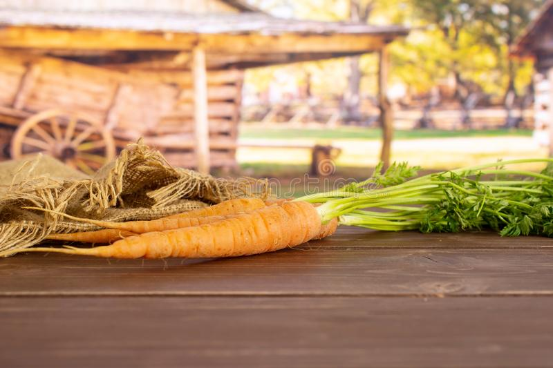 Fresh orange carrot with cart royalty free stock images