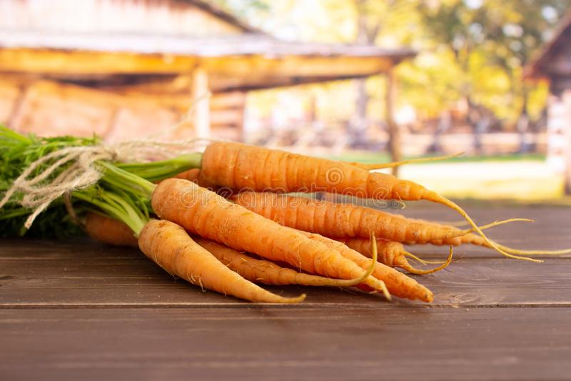 Fresh orange carrot with cart stock images