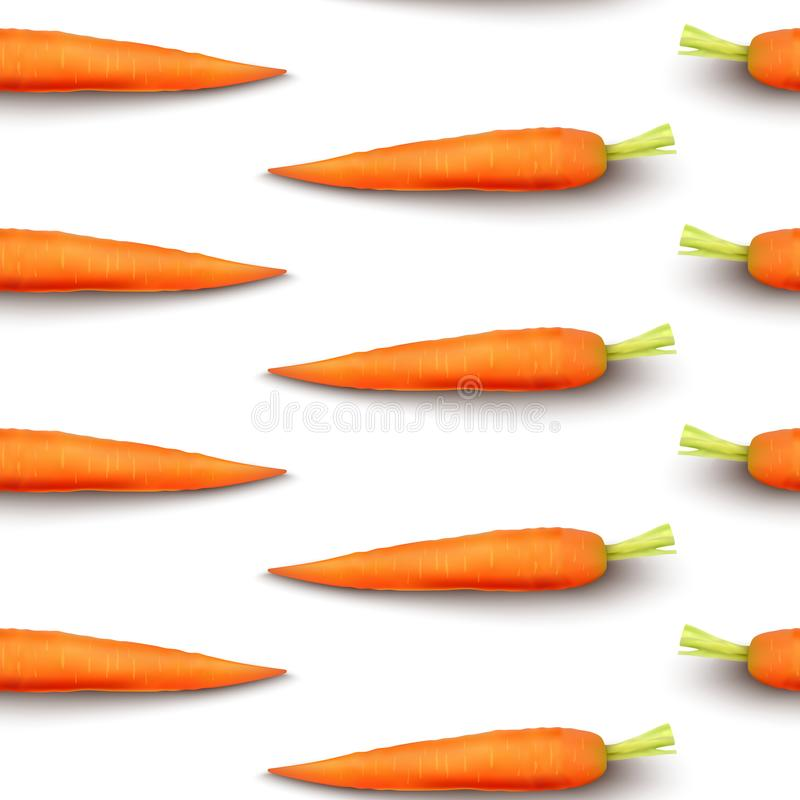 Carrot isolated on white background royalty free illustration