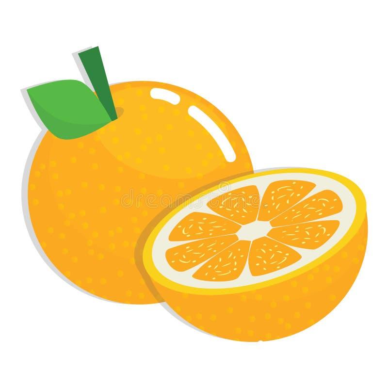 Fresh Orange Fruit. One and Half Fresh Orange Fruit Cartoon Illustration royalty free illustration