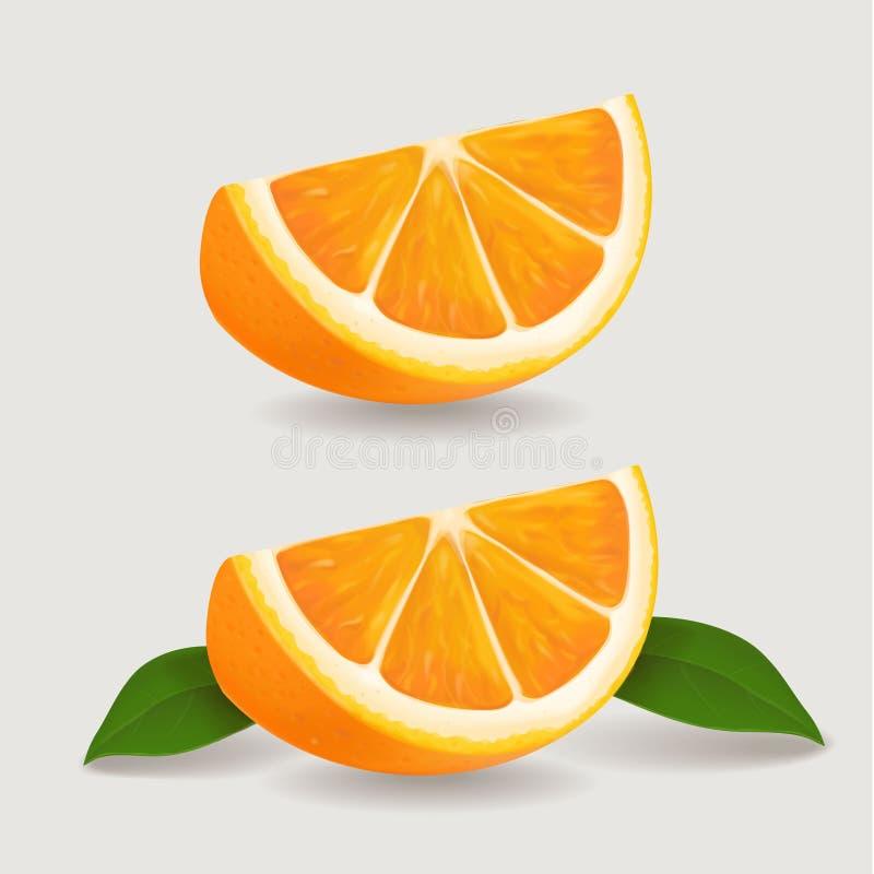Fresh orange fruit slice with green leaves. Realistic vector illustration.  royalty free illustration