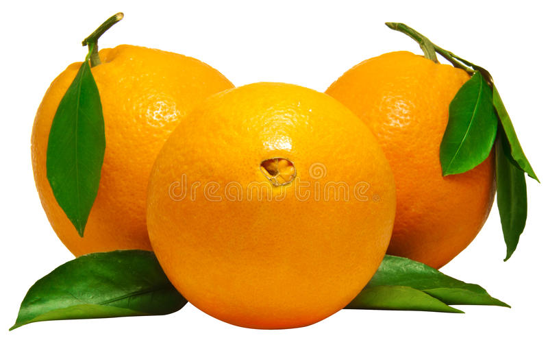 Fresh Orange Fruits Stock Photos