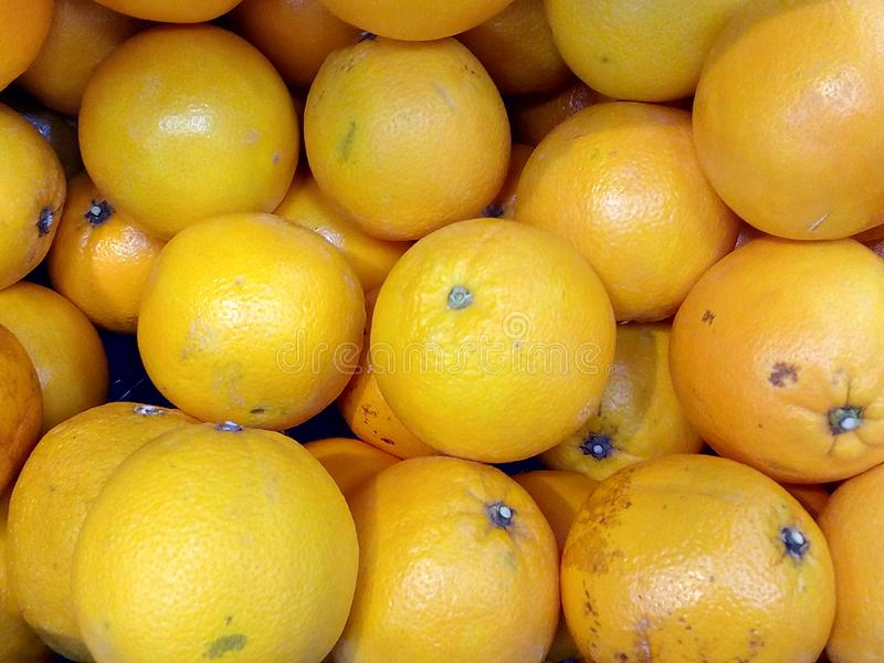 Natural, orange, healthy, vitamin, diet, tasty, juicy, sweet, red, green, ripe, lemon, tree, garden, business, agriculture, juice, stock photography