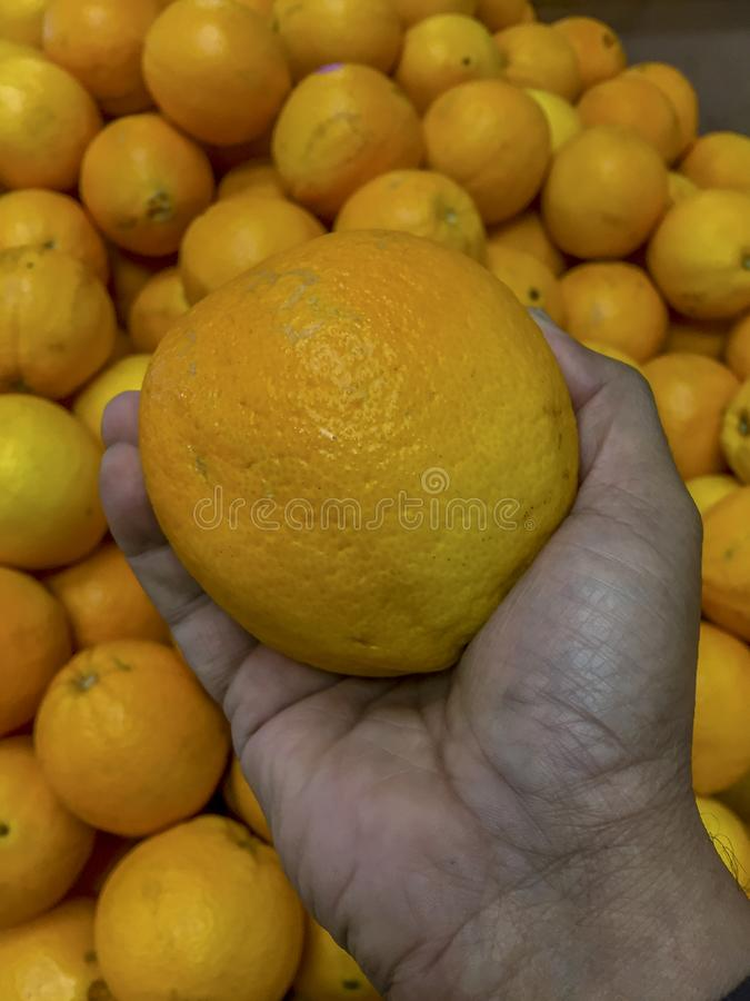 Fresh orange handpicked royalty free stock image