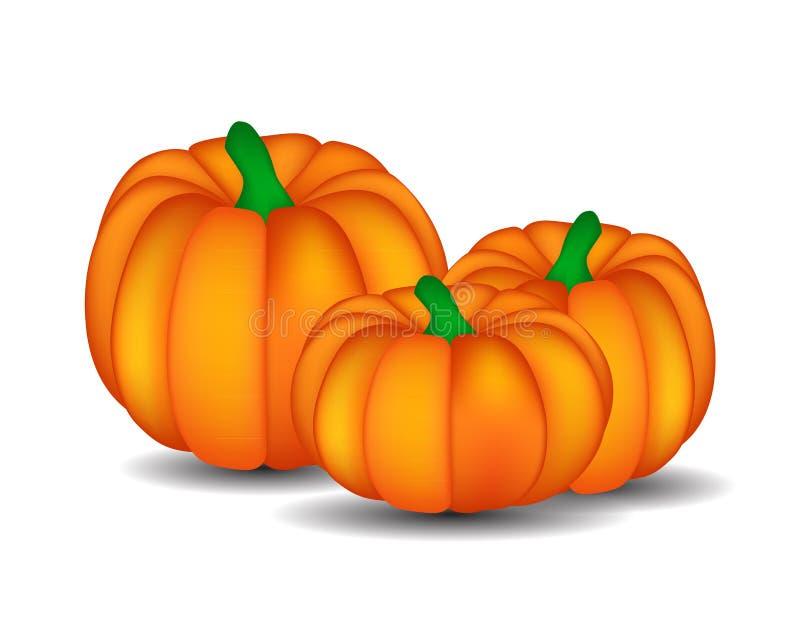 Fresh Orange Pumpkin Isolated on White Background. Vector Illustration stock illustration