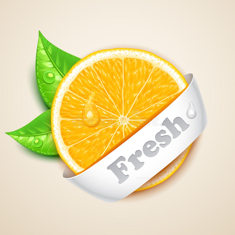 Fresh orange stock illustration