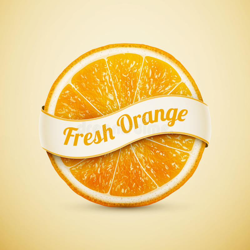 Fresh orange with ribbon. Eps10 illustration royalty free illustration