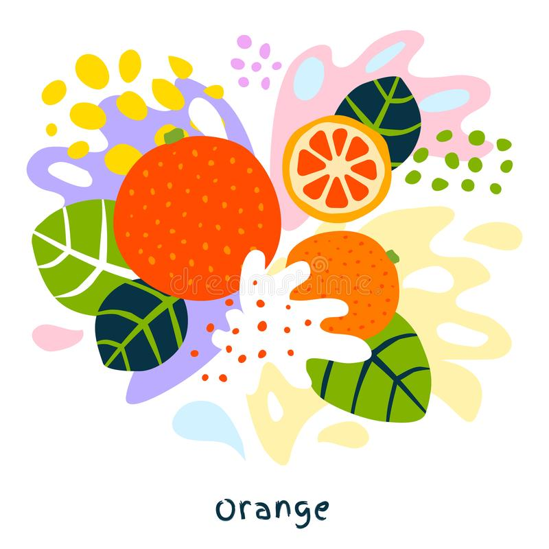 Fresh orange tropical exotic citrus fruits juice splash organic food juicy splatter oranges on abstract background. Vector hand drawn illustrations stock illustration