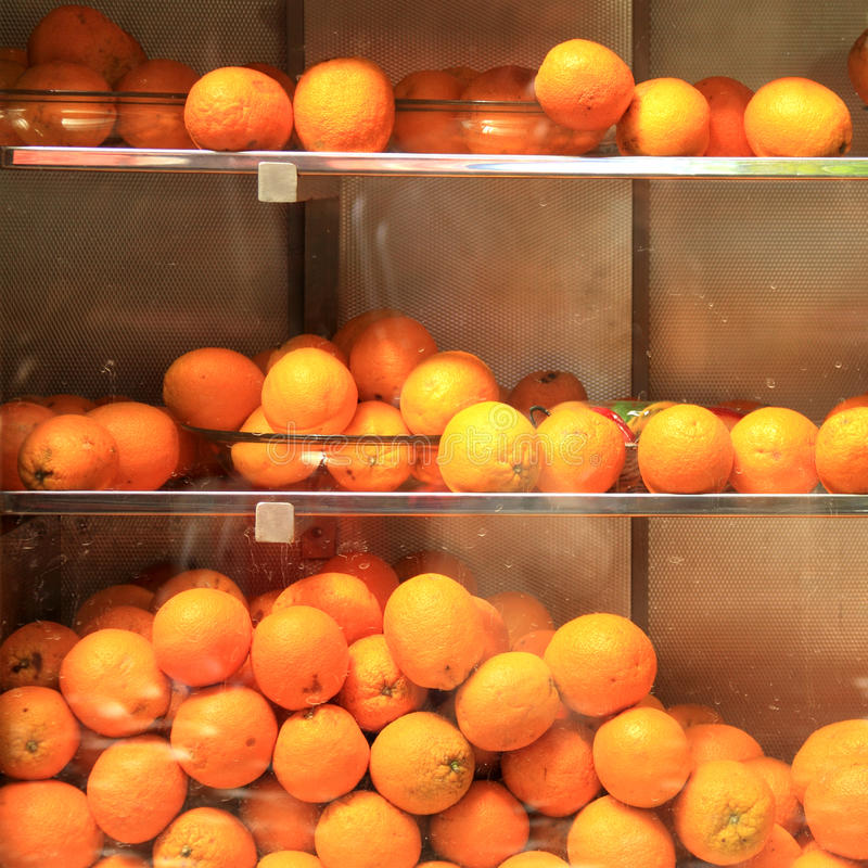Download Fresh oranges stock photo. Image of nutrition, groceries - 23770058
