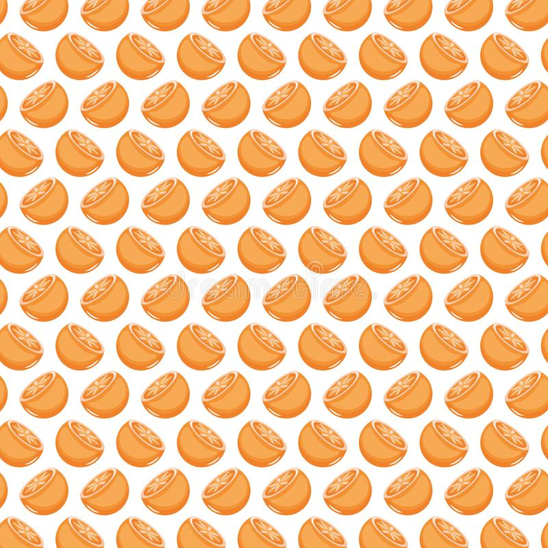 Fresh oranges fruits pattern background. Vector illustration design vector illustration